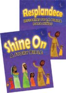 Story Bibles
